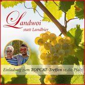 Topcat-Treffen beim Weinfest in der Pfalz